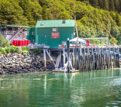 Low Tide in Alaska