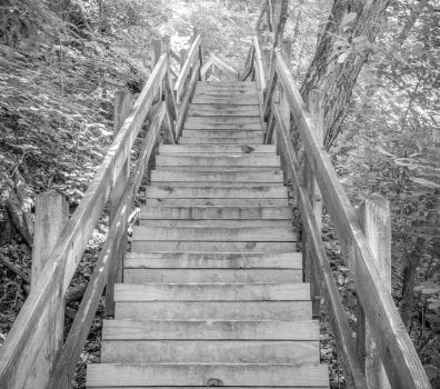 Wooden Staircase in the trees